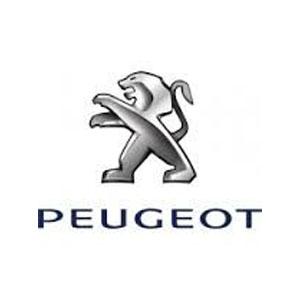 Peugeot Motorbike Keys