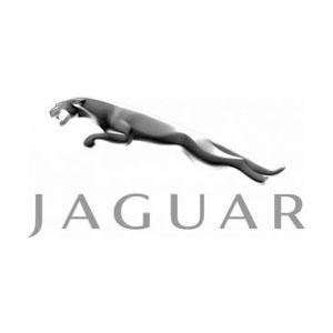 Jaguar Remotes