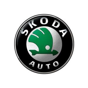 Skoda Remotes